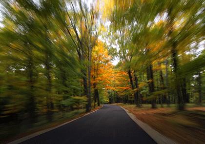 road420